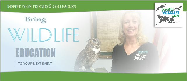 Bring Wildlife Education to your next event