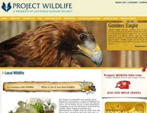 Humane Society of San Diego-Project Wildlife-Coexisting with Wildlife